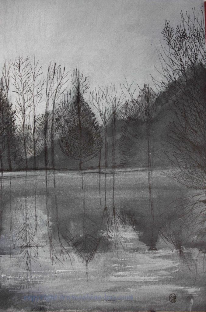 Brume d'arbres