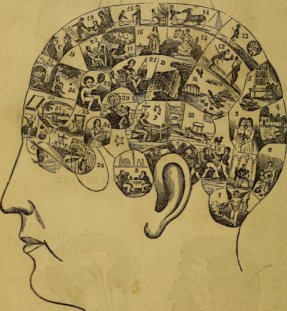 compter les idées